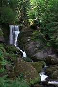 Germany, Baden-Wurttemberg, Triberg waterfalls nature reserve on the Gutach River in the Black Forest