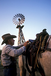 Cowboy putting a saddle on a horse with windmill.
