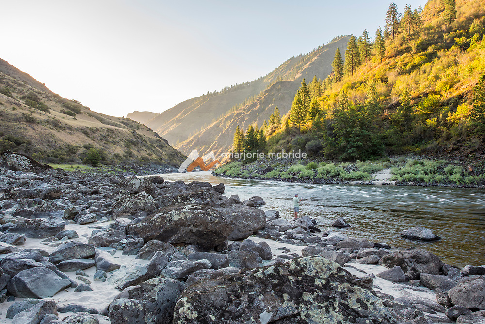 Man fishing along the bank at sunset on a scenic river during a white water rafting trip on the Main Lower Salmon River, Hammer Creek to Hellar Bar, Idaho.