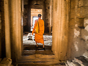 30 NOVEMBER 2014 - LOPBURI, LOPBURI, THAILAND: A Buddhist monk wanders through the interior Phra Prang Sam Yot, a historic temple in the Khmer style, during the annual monkey buffet party in Lopburi. Lopburi is the capital of Lopburi province and is about 180 kilometers from Bangkok. Lopburi is home to thousands of Long Tailed Macaque monkeys. A regular sized adult is 38 to 55cm long and its tail is typically 40 to 65cm. Male macaques weigh around 5 to 9 kilos, females weigh approximately 3 to 6 kg. The Monkey Buffet was started in the 1980s by a local business man who owned a hotel and wanted to attract visitors to the provincial town. The annual event draws thousands of tourists to the town.    PHOTO BY JACK KURTZ