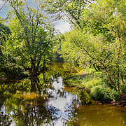 One of the many streams flowing between the Raritan River and D&R Canal in Hillsborough, NJ.