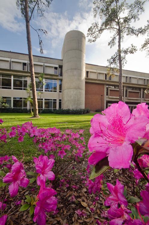 University of Florida campus.