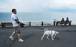 © Licensed to London News Pictures. <br /> 06/08/2014. <br /> <br /> Saltburn by the Sea, United Kingdom<br /> <br /> A man walks his dog along the upper promenade in Saltburn by the Sea in Cleveland as storm clouds build further out in the North sea.<br /> <br /> Photo credit : Ian Forsyth/LNP