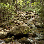 A stream in the White Mountain National Forest, New Hampshire, USA