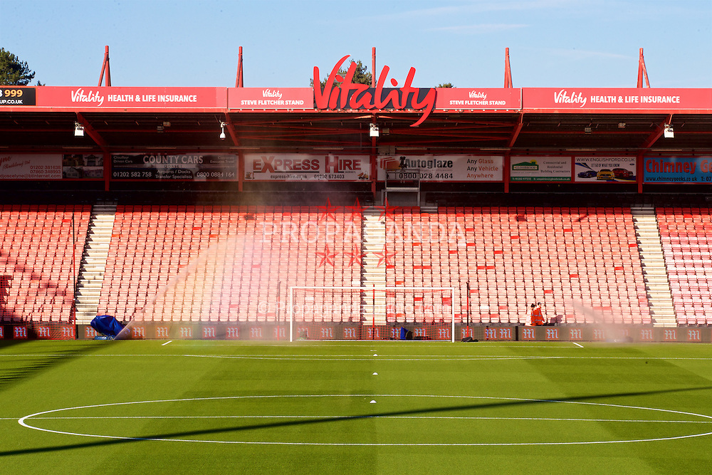 BOURNEMOUTH, ENGLAND - Sunday, December 4, 2016: SISGrass re-enforced natural turf system at AFC Bournemouth's Vitality Stadium, pictured before the FA Premier League match against Liverpool. (Pic by David Rawcliffe/Propaganda)