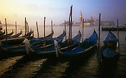 A line of gondolas sit quietly at sunset in the waters of Venice, Italy