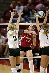 19 November 2005: Laura Doornbos strikes at Sara Lungren(5) and Elizabeth Meyers (15). The Wichita State Shockers electirfied Redbird Arena in Normal Illinois and unnested the Redbirds from their home in 3 straight games.