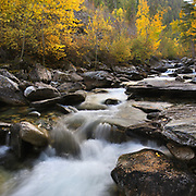 Kootenai Creek Montana.