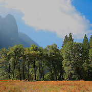 Cathedral Spires - Yosemite Valley Meadow - Yosemite