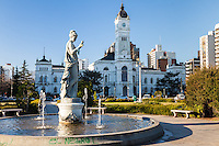 PALACIO MUNICIPAL DE LA PLATA, ACTUAL CASA DE GOBIERNO, LA PLATA, PROVINCIA DE BUENOS AIRES, ARGENTINA (PHOTO © MARCO GUOLI - ALL RIGHTS RESERVED)