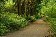 Seward Park Trail.