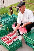 Raspberry street vendor. Lutomierska Street Balucki District Lodz Central Poland