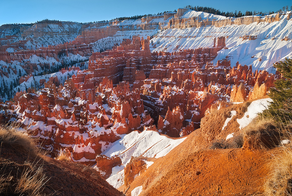 """Bryce Canyon, Utah.  After sunrise, I climbed along the edge of the canyon, up towards the deeper snow up on the rim, looking into the coliseum below me.  The hoodoos of the Claron formation, an oxidized mudstone, were lighting up in pink and orange hues, some almost translucent as the sun reflected off the snow and bounced crazily off the rock.  In this anthropomorphized place, this area is part of the Silent City.  Paiute history says these were """"Legend People"""" who were turned into stone for bad deeds.  I wondered if I could tiptoe down the little exposed ridge just below me, to stand at the edge with my arms outstretched, while the silence deafened me from the amphitheater.   I would make no speech, no signal for the trumpets, no lighting of the torches.  I'd stare awhile, then spin and walk back up.  Let the games begin.  They've been here long enough, awaiting the gladiators."""