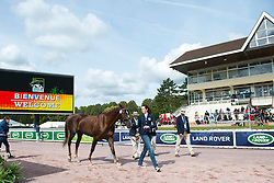Roxanne Trunnell, (USA), Nice Touch, - Horse Inspection Para Dressage - Alltech FEI World Equestrian Games™ 2014 - Normandy, France.<br /> © Hippo Foto Team - Jon Stroud<br /> 25/06/14