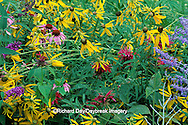 63821-09006 Flower garden with Russian Sage, Gray-headed Coneflowers, Purple Coneflowers, Red Bee Balm & Butterfly Bush Marion Co.   IL