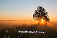 63893-02901 Sunrise at Prairie Ridge State Natural Area, Marion Co, IL