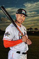 Miami Marlins Giancarlo Stanton poses for a portrait  on February 17 2017.<br /> (Photo/Tom DiPace)