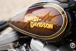 Aaron Eliott's custom 1996 Harley-Davidson Sportster in the RSD Moto Beach Classic custom bike show. Huntington Beach, CA, USA. Saturday October 27, 2018. Photography ©2018 Michael Lichter.