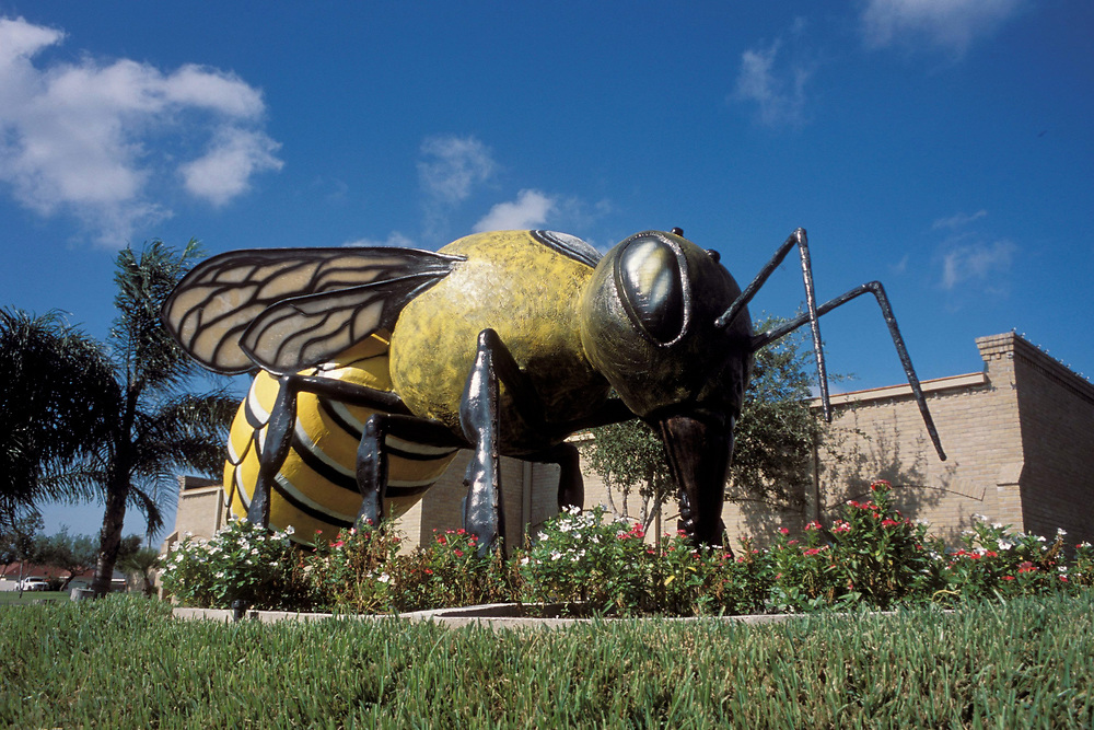 Killer bee statue, 20 ft long 10 ft high, in ftont of city library in Hidalgo, Texas.<br /> ©Bob Daemmrich