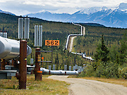 """The Trans Alaska Pipeline (or Alyeska Pipeline) crosses the Alaska Range and conveys crude oil 800 miles (1287 km) from Prudhoe Bay to Valdez, Alaska, USA. Heat Pipes conduct heat from the oil to aerial fins to avoid melting the permafrost. The 48-inch diameter (122 cm) pipeline is privately owned by the Alyeska Pipeline Service Company. The Trans Alaska Pipeline System (TAPS) includes """"The Pipeline"""", several hundred miles of feeder pipelines, 11 pump stations, and the Valdez Marine Terminal. Environmental, legal, and political debates followed the discovery of oil at Prudhoe Bay in 1968. After the 1973 oil crisis caused a sharp rise in oil prices in the United States and made exploration of the Prudhoe Bay oil field economically feasible, legislation removed legal challenges and the pipeline was built 1974-1977. Extreme cold, permafrost, and difficult terrain challenged builders. Tens of thousands of workers flocked to Alaska, causing a boomtown atmosphere in Valdez, Fairbanks, and Anchorage. Oil began flowing in 1977. The pipeline delivered the oil spilled by the huge 1989 Exxon Valdez oil tanker disaster, which caused environmental damage expected to last 20-30 years in Prince William Sound."""