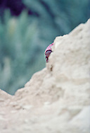 This young girl was playing hide and seek from behind a boulder