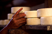 Sao Roque de Minas_MG, Brasil...Producao artesanal de queijo canastra, na regiao da Serra da Canastra. Na foto a maturacao ou  cura do queijo...The handmade production of Canastra cheese, in the Serra da Canastra region. In this photo the cheese maturation...FOTO: JOAO MARCOS ROSA / NITRO