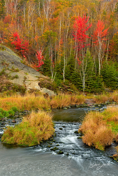 Autumn foliage in the forest overlookign Junction Creek, Greater Sudbury, Ontario, Canada