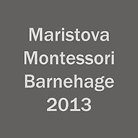 Maristova_2013