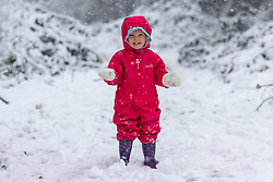© Licensed to London News Pictures. 14/01/2021. Leeds UK. 2 year old Holly plays in the snow for the very first time today at Primrose Valley park in Leeds after heavy snowfall in Yorkshire. Photo credit: Andrew McCaren/LNP