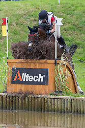 Hawley Bennett Awad, (CAN), Gin & Juice - Eventing Cross Country test - Alltech FEI World Equestrian Games™ 2014 - Normandy, France.<br /> © Hippo Foto Team - Leanjo de Koster<br /> 30/08/14