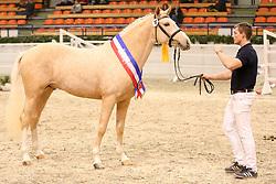 , 67 - Pferdestammbuch 07. - 09.20.2014, 072 - Steendieks Corlandos - Sieger
