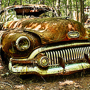 An old sedan in a forest is settling into a future of rusting at the Old Car City junkyard in Georgia.