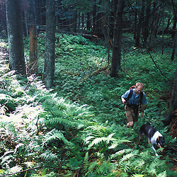 East Montpelier, VT. TPL staff member explores the forest next to Mallory Brook.