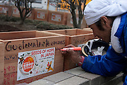 Donald Martin from Guatemala and a Peace Boat volunteer signs a box of seeds after taking part in the clean-up operations in Ishinomaki, Miyagi Friday May 6th 2011. Around 350 volunteers took part in the relief effort over the Golden Week holiday, including 41 foreigners, clearing mud and removing debris from this coastal town which more almost levelled in the March 11th earthquake and tsunami.