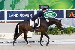 Tinne Vilhelmson Silfven, (SWE), Don Auriello - Grand Prix Team Competition Dressage - Alltech FEI World Equestrian Games™ 2014 - Normandy, France.<br /> © Hippo Foto Team - Leanjo de Koster<br /> 25/06/14