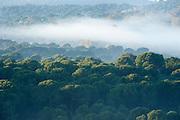 Early Morning mist across landscape, Sierra de Andujar Natural Park, Sierra Morena, Andalucia, Spain