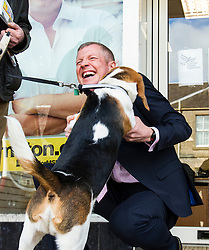 Pictured: Willie Rennie makes friends with Alfie Beagle<br /> <br /> Liberal Democrat leader Willie Rennie was in campaign mode when in Edinburgh Western ahead of the second TV leaders' debate. Mr Rennie joined volunteers at a street stand outside the local campaign office in Corstorphine with local candidate Alex Cole-Hamilton. <br /> <br /> Ger Harley | EEm 29 March 2016