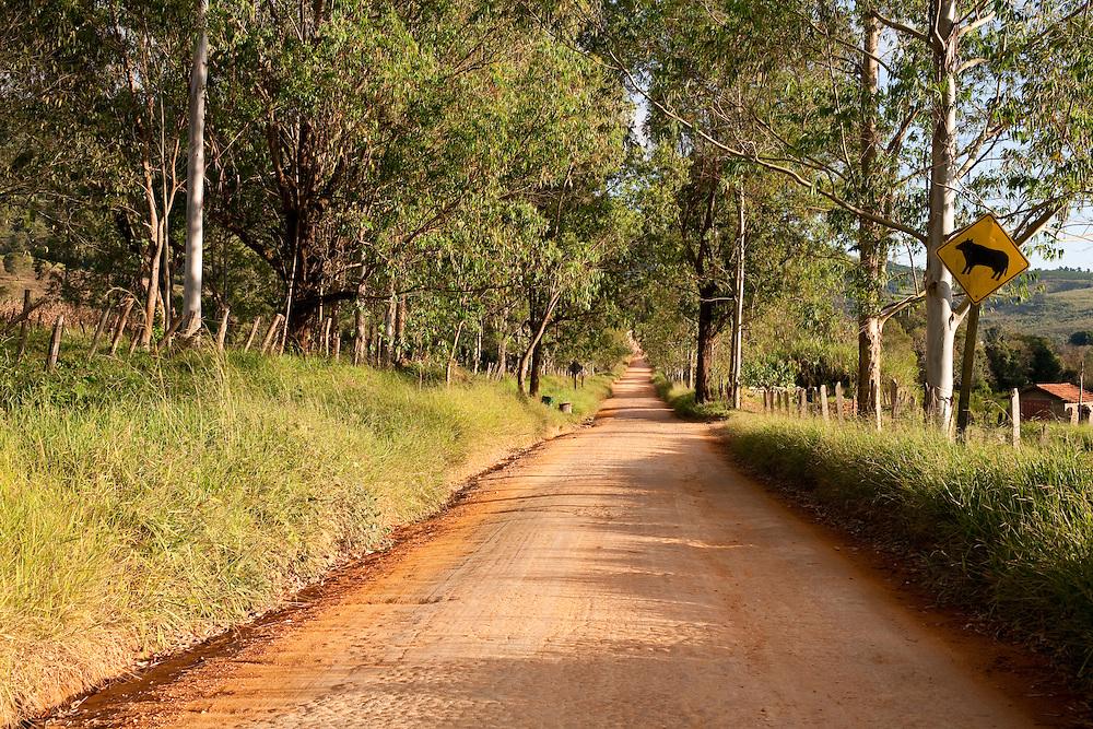 Jacui_MG, Brasil...Estrada de terra em Jacui...A dirty road in Jacui...Foto: LEO DRUMOND / NITRO