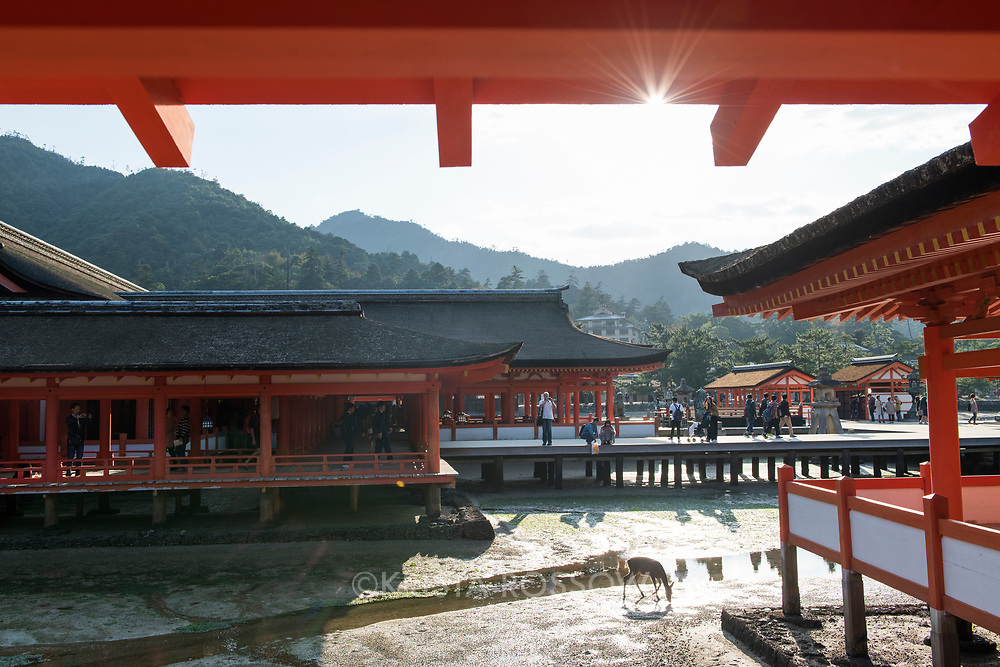 The bright orange Itsukushima Shrine is known as the floating shrine because of its unique placement on the Seto Inland Sea. It is located on Miyajima Island and is a UNESCO World Heritage Site.