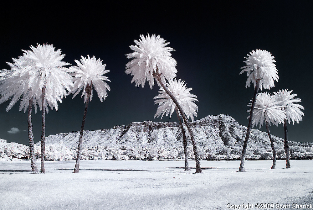 An infrared image of Diamond Head from Kapiolani Park in Honolulu, Hawaii.