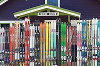 Ski fence, Glacier Washington