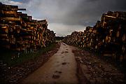 A staging point for logging operation in Eastern Republika Srpska.