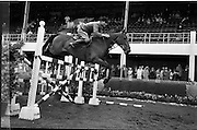 """09/08/1962<br /> 08/09/1962<br /> 09 August 1961<br /> RDS Horse Show, Ballsbridge Dublin, Thursday. <br /> Picture show """"Rahin"""" owned by Noel O'Dwyer, Ballyclough House, Castletroy, Co. Limerick, jumping in Comp G. He was placed 4th in Comp."""