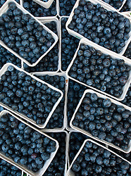 Detail of boxes of blueberries on fruit stall at weekend market in Prenzlauer Berg Berlin Germany