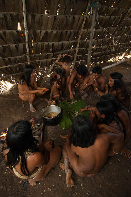 Huaorani eating in their house. The meat is chopped up and placed on banana leaves on the floor.<br /> Bameno Community. Yasuni National Park.<br /> Amazon rainforest, ECUADOR.  South America<br /> This Indian tribe were basically uncontacted until 1956 when missionaries from the Summer Institute of Linguistics made contact with them. However there are still some groups from the tribe that remain uncontacted.  They are known as the Tagaeri & Taromenane. Traditionally these Indians were very hostile and killed many people who tried to enter into their territory. Their territory is in the Yasuni National Park which is now also being exploited for oil.