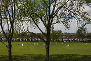 Looking eastwards through 100 year old ash trees, a local game of cricket is played on the green grass of Ruskin Park, Lambeth overlooking the city. As the bowler comes in to deliver a fast ball to the waiting batsman, we see acrossto period Edwardian homes on the 1908 Ruskin Park. Cricket is a bat-and-ball game played between two teams of 11 players on a field, at the centre of which is a rectangular 22-yard long pitch. First played in southern England in the 16th century, one team bats, trying to score as many runs as possible while the other team bowls and fields, trying to dismiss the batsmen and thus limit the runs scored by the batting team. A run is scored by the striking batsman hitting the ball with his bat, running to the opposite end of the pitch and touching the crease there without being dismissed.