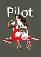 This charming fine art piece shows a cat leaping over an airplane. This is a pretty small airplane, so perhaps the cat simply can't fit. No matter what, we can easily imagine the delightful image of a cat piloting a plane. This cat seems to be looking ahead to something else, but they are nonetheless still aware of the airplane that is just beneath their feet. This piece combines a unique, almost vintage-style airplane with a shot of a beautiful housecat in motion. The end result is something that will delight absolutely everyone in your home. You can place this piece just about anywhere. .<br />