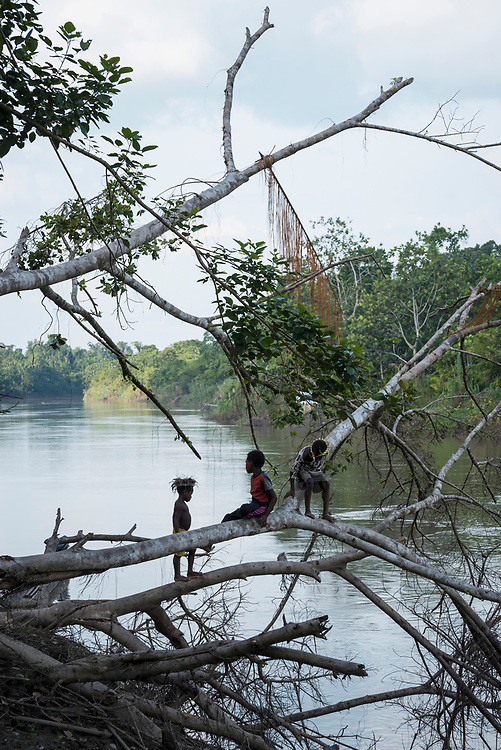 A boy walks across a fallen tree in the village of Yar, located on the Keram River in the East Sepik Province of Papua New Guinea.<br /><br />(June 21, 2019)