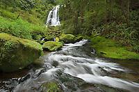 Upper Kentucky Falls Siuslaw National Forest Oregon