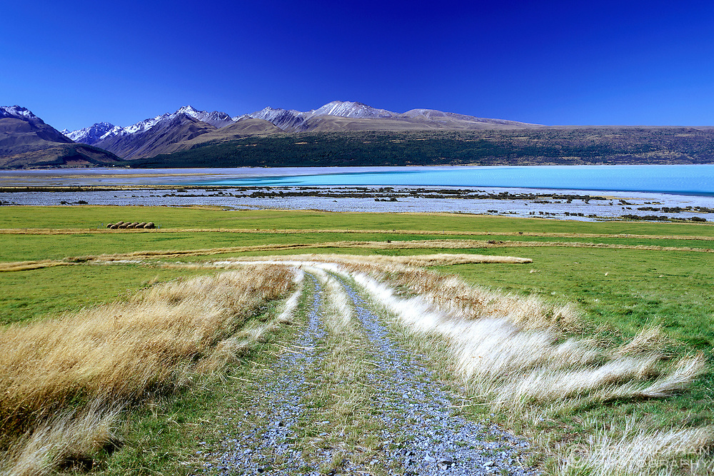 Lake Pukaki in the Aoraki National Park on the South Island of New Zealand. Shot on 6X7 transparency film.